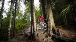 Whistler hotels near Whistler Mountain Bike Park