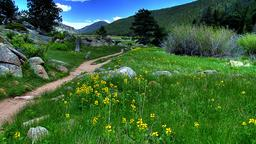 Rocky Mountain National Park hotels